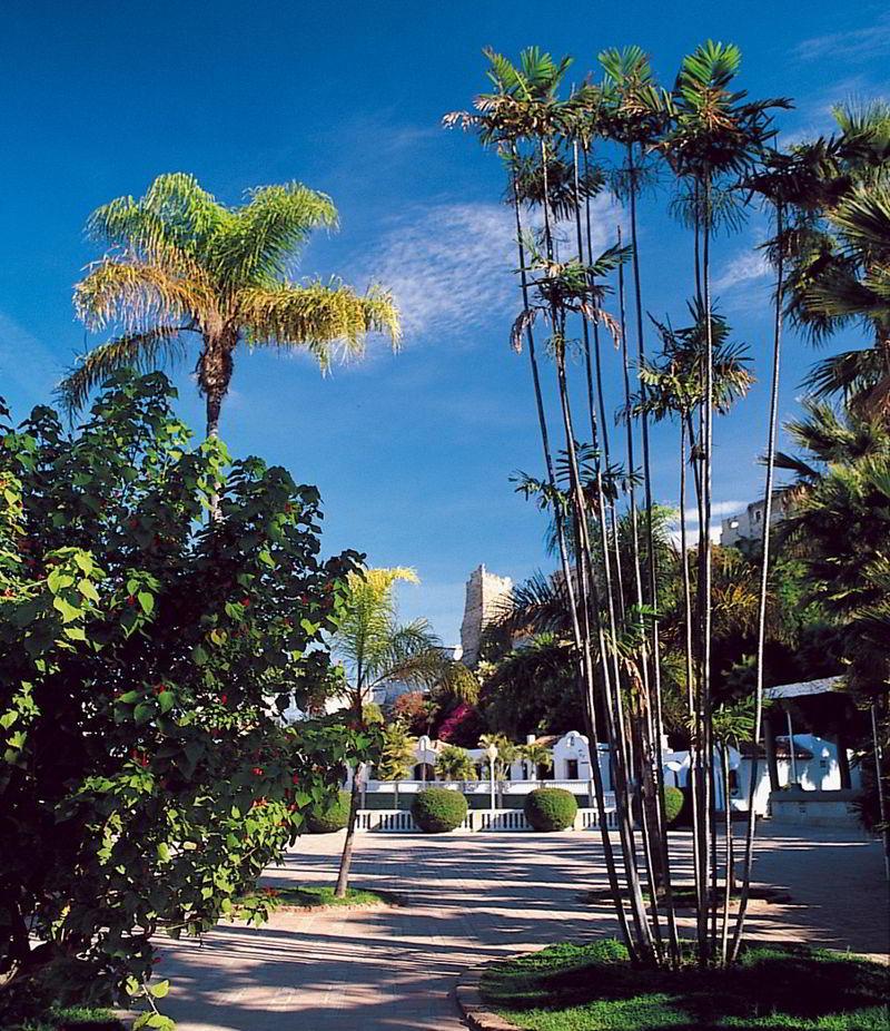 Parque Majuelo